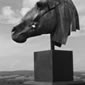 sculpture-enlargement-nick-green-horse-head